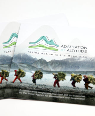 Adaptation at Altitude. Taking Action in the Mountains