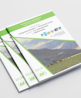 "Terminal evaluation of the GEF-financed project ""Establishing Integrated Models of Protected Areas and their Co-management in Afghanistan"""