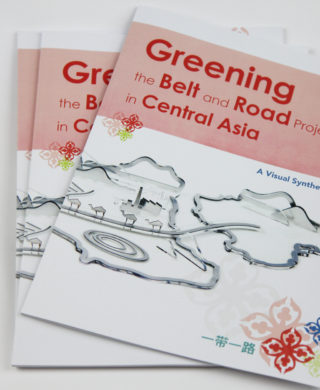 Greening the Belt and Road Projects in Central Asia. A Visual Synthesis