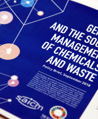 Gender and the Sound Management of Chemicals and Waste