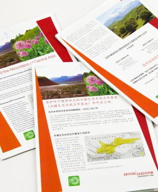 CEPF and the Mountains of Central Asia flyer