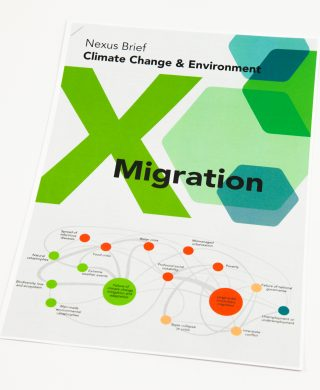 Nexus Brief: Climate Change & Environment x Migration