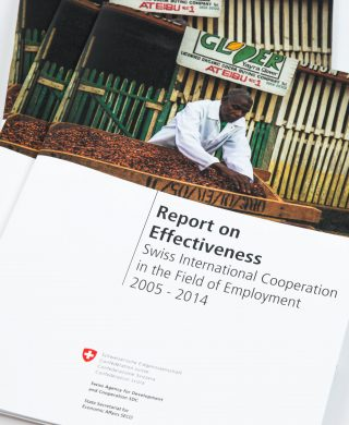 Report on Effectiveness: Swiss International Cooperation in the Field of Employment