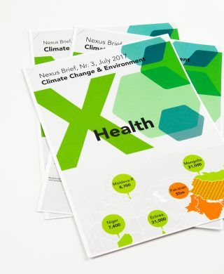 Nexus Brief: Climate Change & Environment x Health