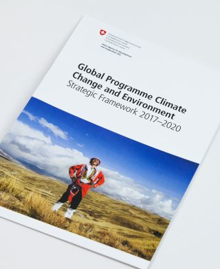 Global Programme Climate Change and Environment – Strategic Framework 2017-2020