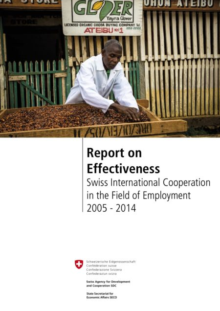 Report on Effectiveness: Swiss International Cooperation in the Field of Employment EN