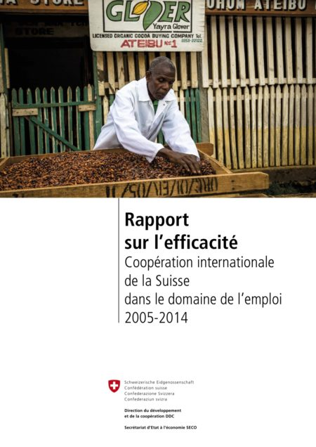 Report on Effectiveness: Swiss International Cooperation in the Field of Employment FR