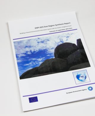 ENPI-SEIS East Region Synthesis Report