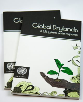 Global Drylands: a UN system-wide response