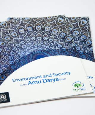 Environment and Security in the Amu Darya River Basin