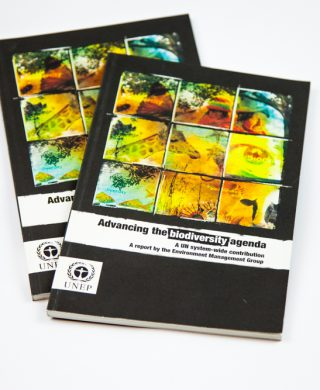 Advancing the Biodiversity Agenda