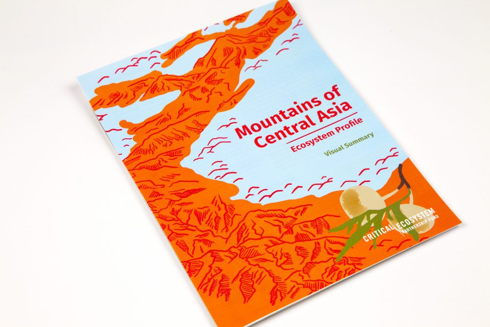 Mountains of Central Asia: Ecosystem profile