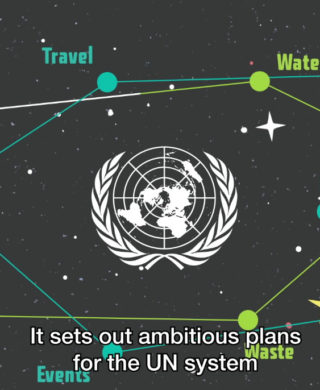 Sustainability in the UN System: video