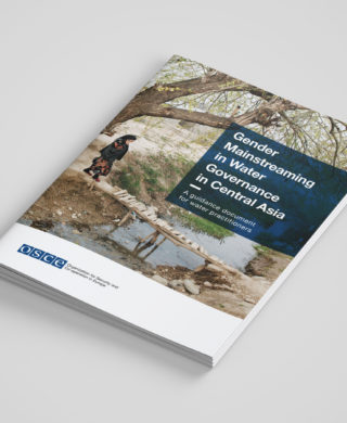 Gender Mainstreaming in Water Governance in Central Asia – A guidance document for water practitioners