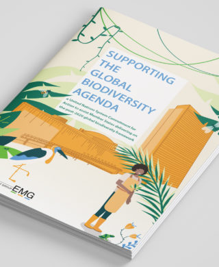 Supporting the Global Biodiversity Agenda: A United Nations System Commitment for Action to assist Member States delivering on the post-2020 global biodiversity framework