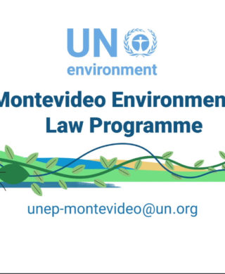 Montevideo Environmental Law Programme video